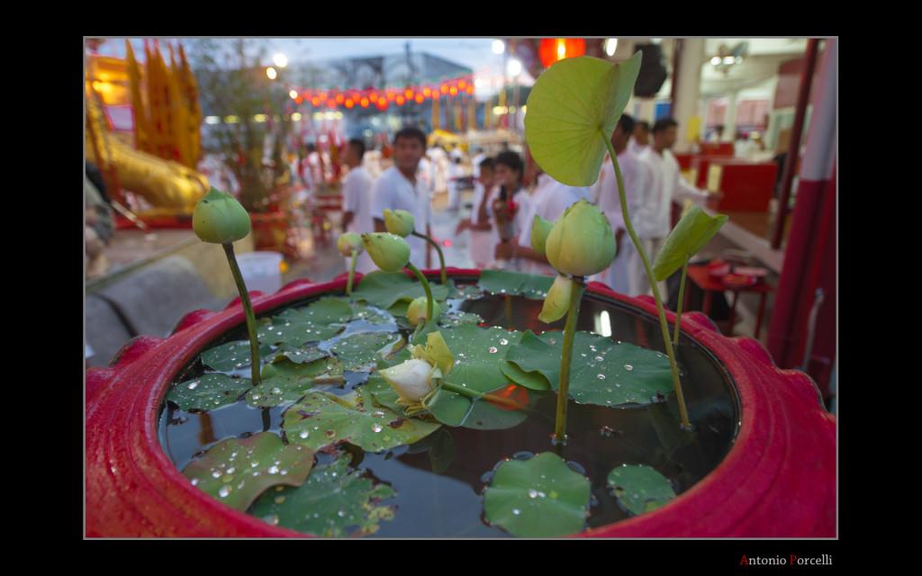 Tailandia_bordate-077