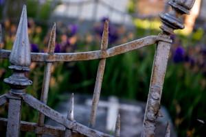 cimitero degli inglesi_53_resize