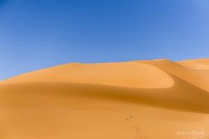 il fascino incomparabile del deserto-08.jpg
