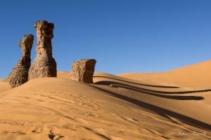 il fascino incomparabile del deserto-10.jpg
