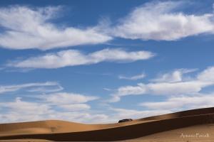 il fascino incomparabile del deserto-19.jpg