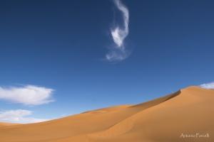 il fascino incomparabile del deserto-26.jpg