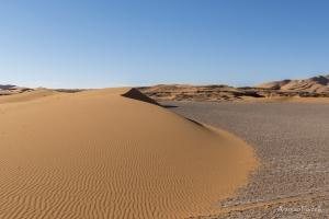 il fascino incomparabile del deserto-43.jpg