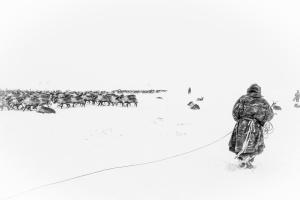 Caccia alle renne_04.jpg