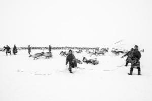 Caccia alle renne_08.jpg