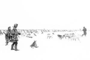 Caccia alle renne_13.jpg