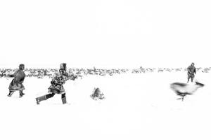 Caccia alle renne_14.jpg