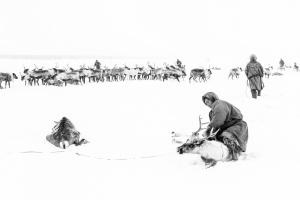 Caccia alle renne_17.jpg