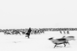 Caccia alle renne_34.jpg