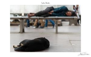 India Streets-36.jpg
