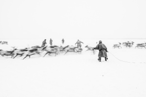Caccia alle renne_15.jpg