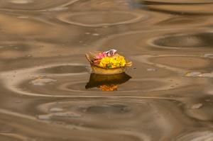 India2011_0078.jpg